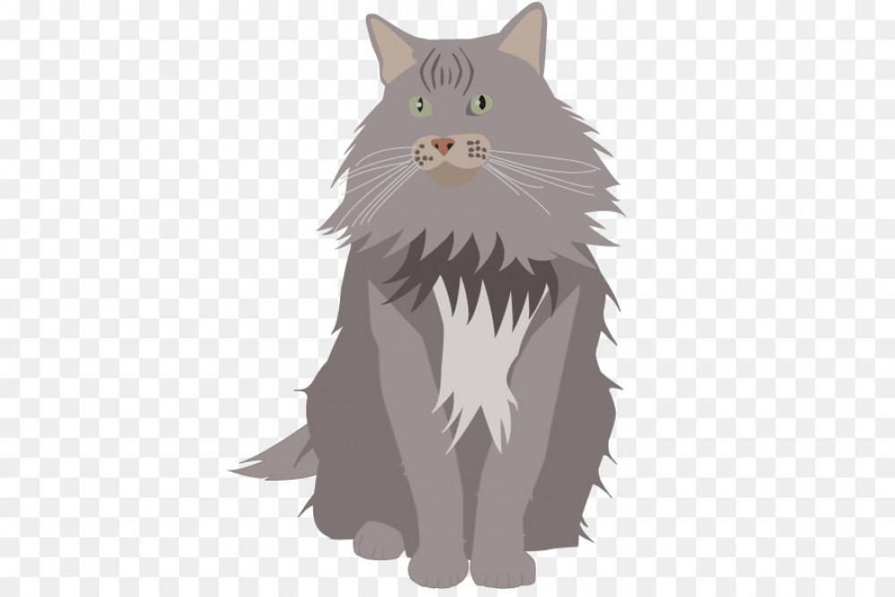 Lost Female Cat (Grey, Persian Mix)